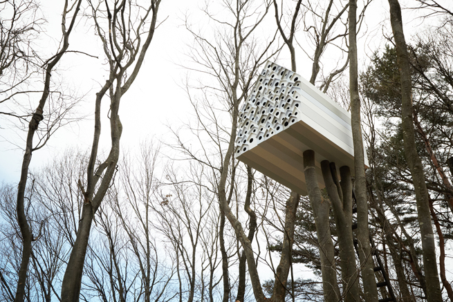 un-nichoir-qui-sert-observatoire-Birds-Apartment-nedo-0