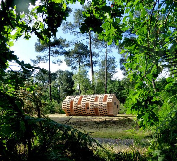 la-mini-maison-tronc-creux-arbre-amenage-bruit-du-frigo-zebra3-refuge-periurbain-pessac