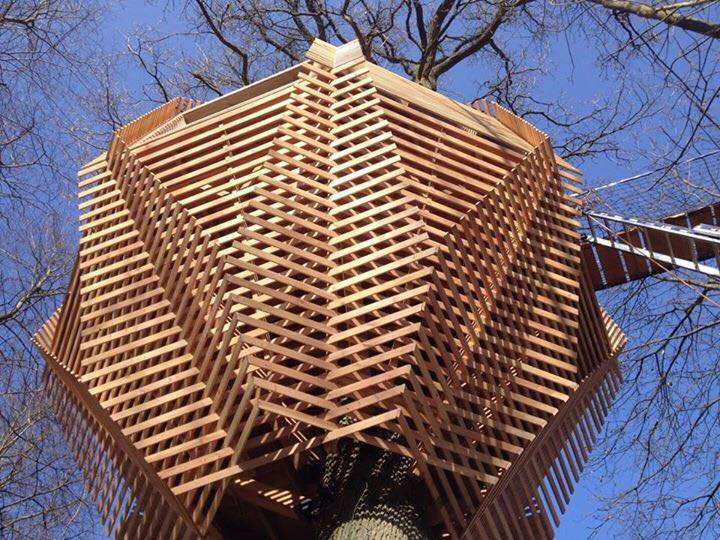 cabane-dans-les-arbres-en-picardie-8